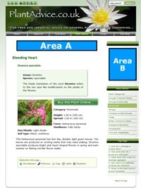 Advertisement areas for the PlantAdvice.co.uk website