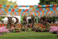 RHS Hampton Court Flower Show 2019