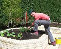 The Benefits of Raised Vegetable Beds