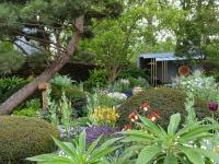 The Morgan Stanley Garden at the RHS Chelsea Flower Show 2019