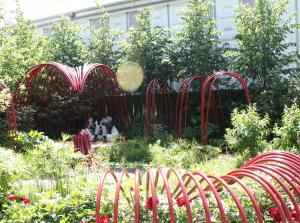 The British Heart Foundation Garden