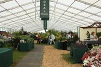 Hampton Court Floral Marquee