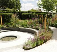 The Cancer Research Garden at the 2019 RHS Hampton Court flower show