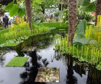 The World Vision fresh garden at RHS Chelsea 2015