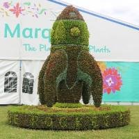 Episode 35: RHS Hampton Court Palace Flower Show & Gardening Jobs for July